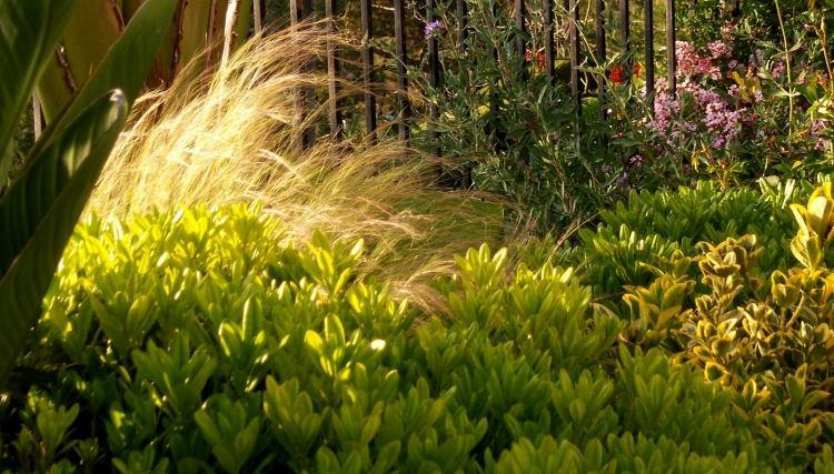 vorgarten graser   moregs, Garten und erstellen