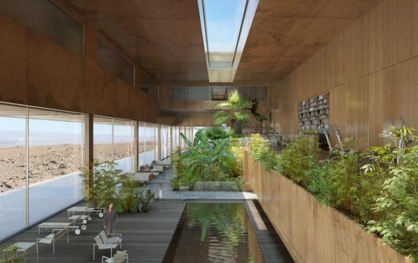Ruhevollen IndoorGarten anlegen  Welche Pflanzen eignen sich dazu