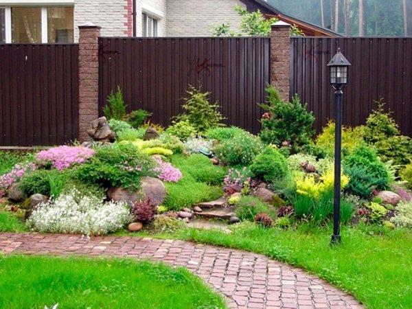 pflanzen fur steingarten - terrasseenbois, Gartengerate ideen