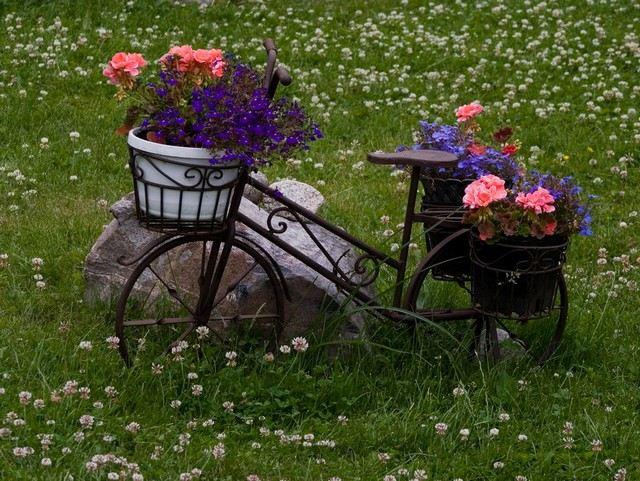 Deko Fahrrad Garten | Moregs Blumenbeet Anlegen Teppichbeet Tipps