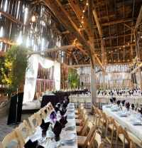 Hochzeitsdeko am haus  Die besten Momente der Hochzeit ...