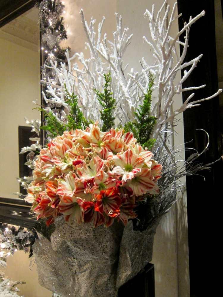 Amaryllis Blumengestecke zu Weihnachten arrangieren