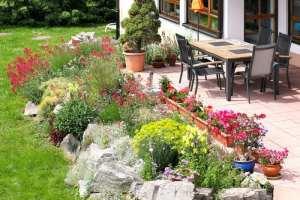 Steingarten gestalten   Nützliche Tipps, Ideen und Beispiele