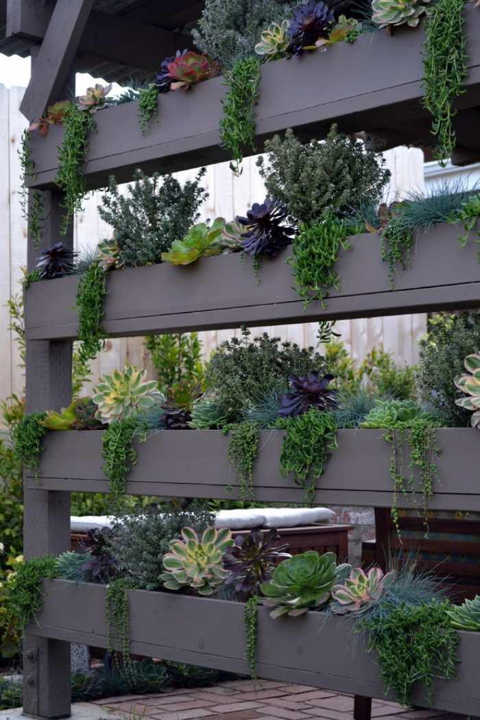 Diy Sichtschutz Fur Terrassen Pflanzen ? Bitmoon.info Diy Sichtschutz Fur Terrassen Pflanzen