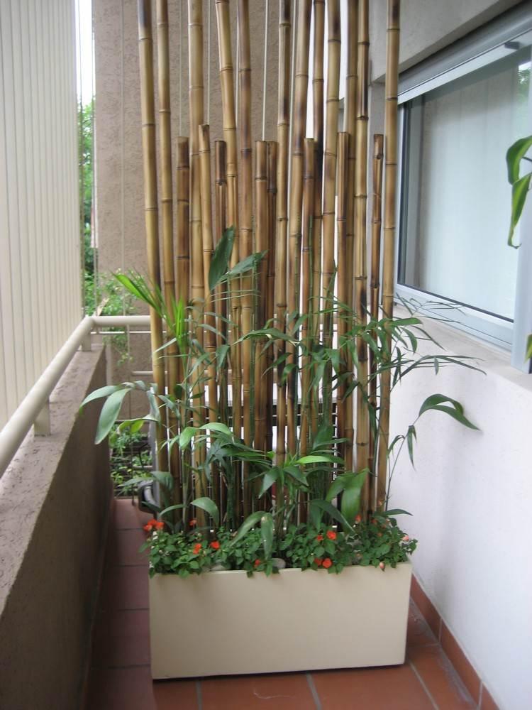 balkon sichtschutz mit pflanzen good fenster innen holz startseite design bilder. Black Bedroom Furniture Sets. Home Design Ideas