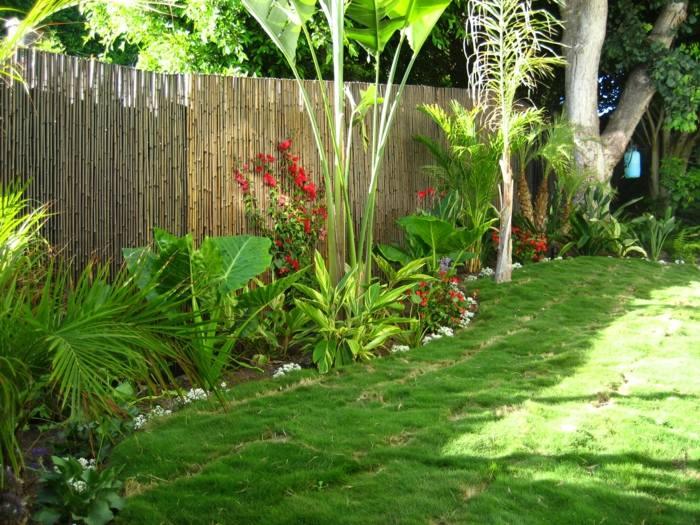exotisch palmen pool garten - boisholz, Hause und garten