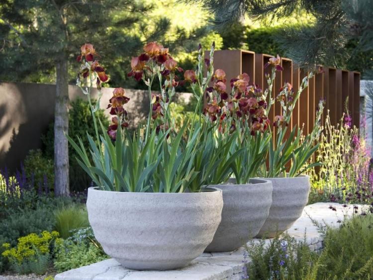 moderner garten mit holz und stein living stone garden - boisholz,
