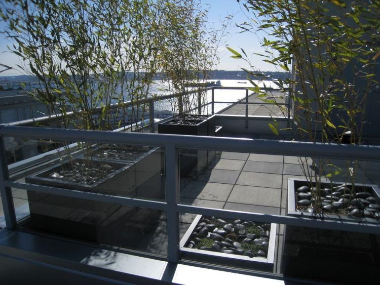 awesome bambus kubel sichtschutz terrasse contemporary .... bambus ... - Bambus Kubel Sichtschutz Terrasse