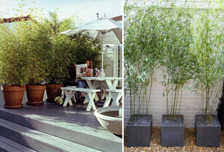 Bambus Kubel Sichtschutz Terrasse Dekorative Pflanzgefaesse