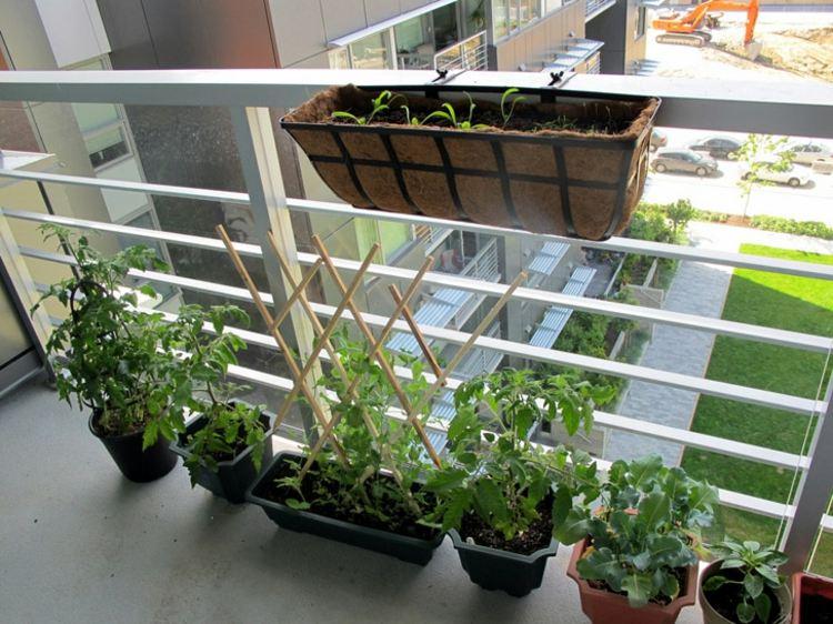 n gardens hyderabad » terrassenholz, Gartengerate ideen