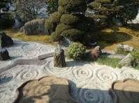 Gestalten Sie Ihren eigenen Steingarten in einigen Schritten