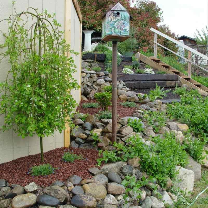 garten steine anlegen ideen steingarten anlegen und bepflanzen,