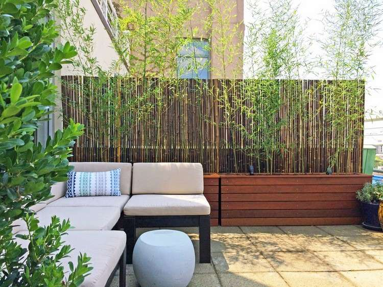 Ideas About Pflanzkubel Holz On Pinterest Bambus Sichtschutz ... Sichtschutz Balkon Bambuspflanzen