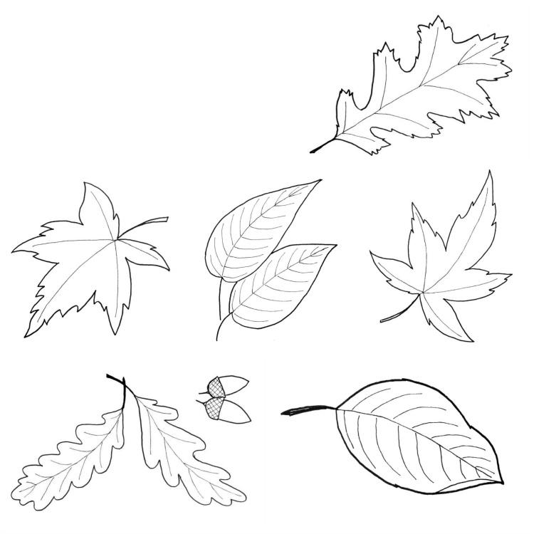 Fensterbilder fr den Herbst basteln 25 Ideen und Vorlagen