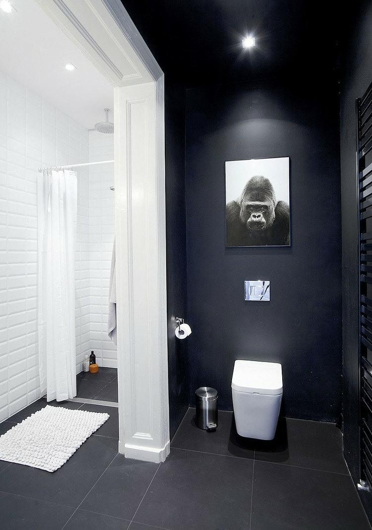 Toilette Au Mur