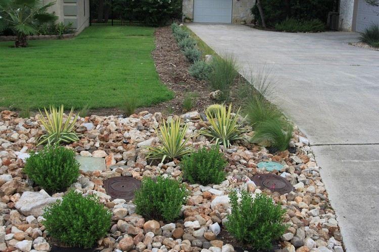 Steinbeet Vorgarten Grob Behauenen Steine Kleinwuechsige Pflanzen