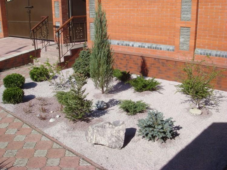 Steinbeet Vorgarten Trockenheitstolerante Pflanzen Koniferenarten