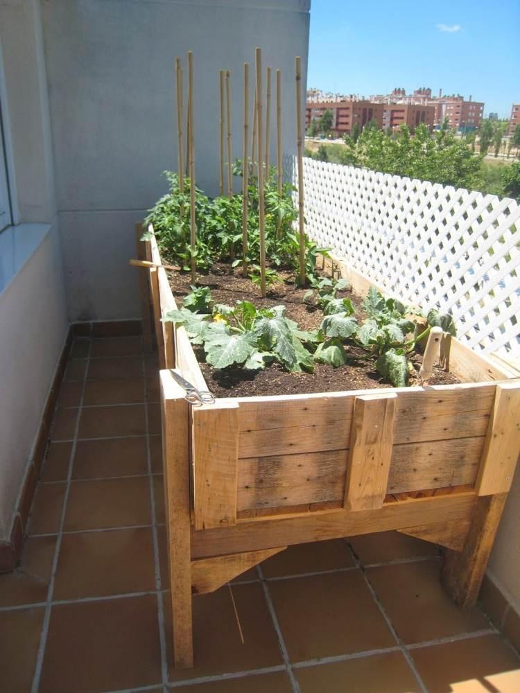 Hochbeet Balkon Selber Bauen Holz Bepflanzen Tomaten Gemuese | Moregs Hochbeet Balkon Bauen Bepflanzen