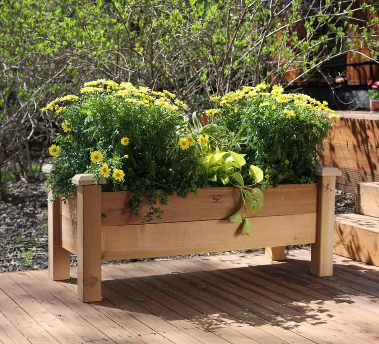 hochbeet balkon selber bauen bepflanzen holz rahmen kasten | moregs, Gartengerate ideen