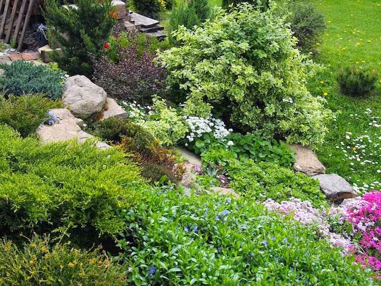 Gartengestaltung Pflege Gartengestaltung Hang Tipps | Moregs Vorgartengestaltung Ideen Tipps Pflege