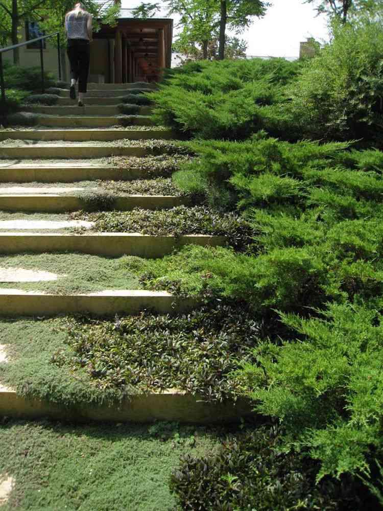 Gartengestaltung Pflege Gartentreppe Selber Bauen Gestaltung Tipps ... Vorgartengestaltung Ideen Tipps Pflege