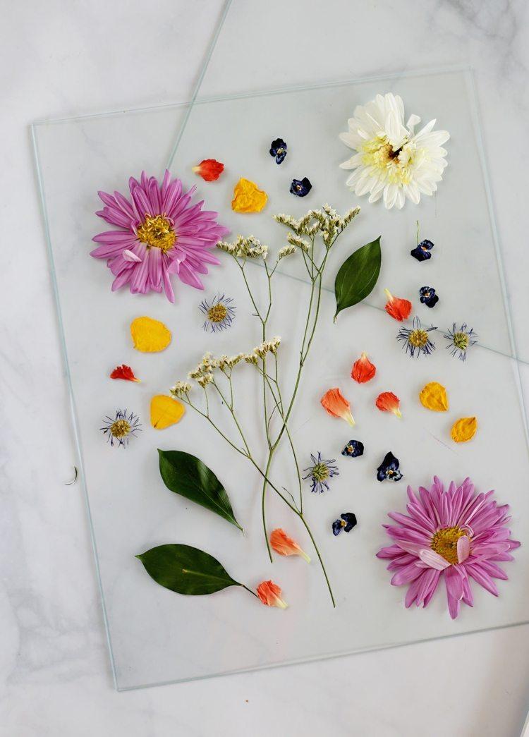 Gepresste Blumen fr wunderhbsche Bastelideen nutzen