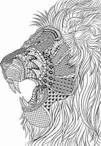 Ausmalbilder Erwachsene Löwe Ausmalbilder Fur