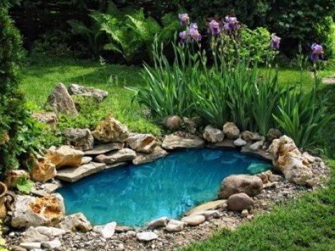oase teich gartenteich ratgeber: eigene oase im hausgarten selber bauen