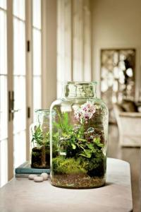 Wie kann man Pflanzgefe innen bepflanzen - 20 Ideen fr ...