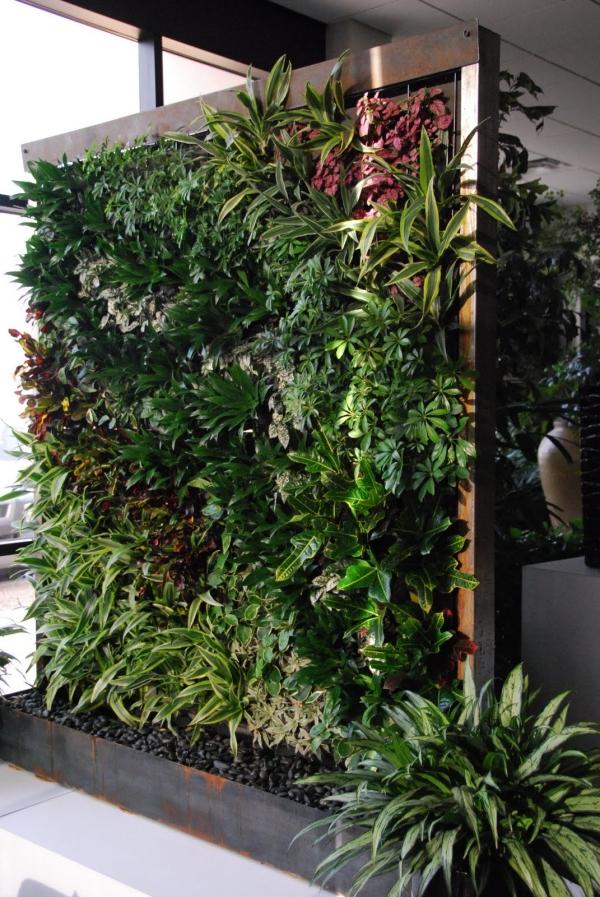 Jardin vertical et mur vgtal dans le paysage urbain moderne