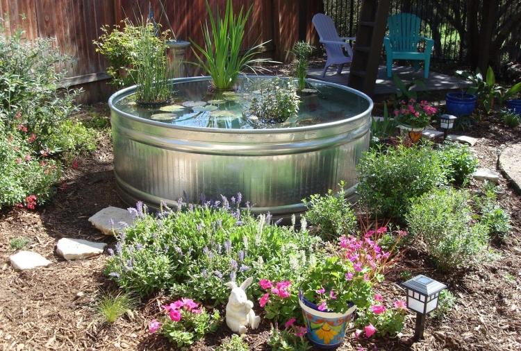 Comment faire un jardin aquatique conseils et photos