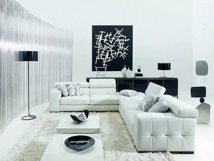 salon noir et blanc les meilleures