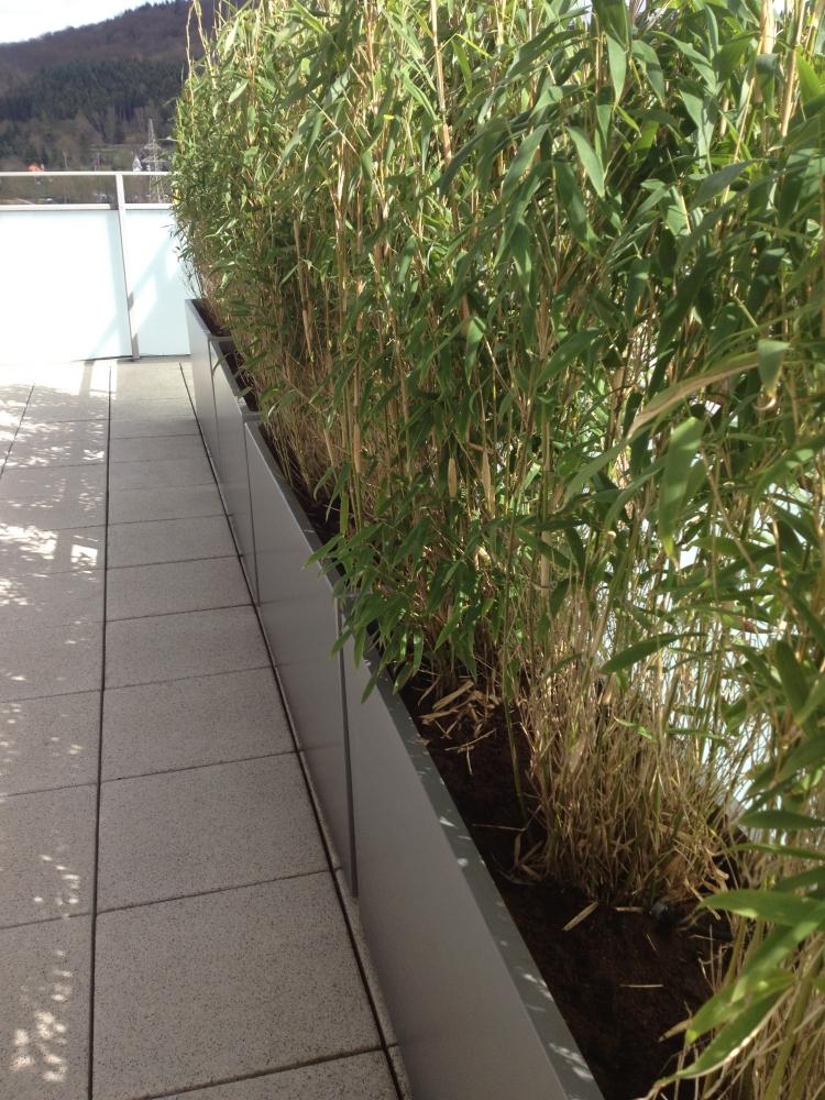 Jardinire design en fibreciment  brisevue vert sur le balcon