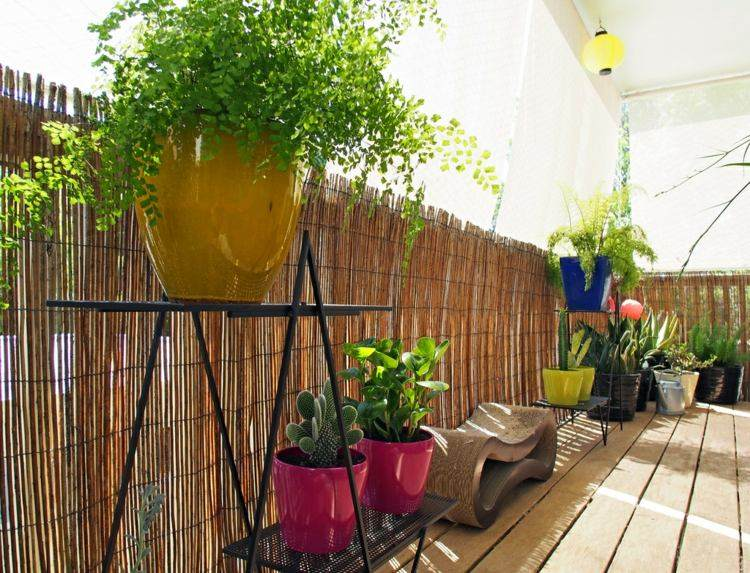 Amnagement balcon  choix de mobilier stores et plantes