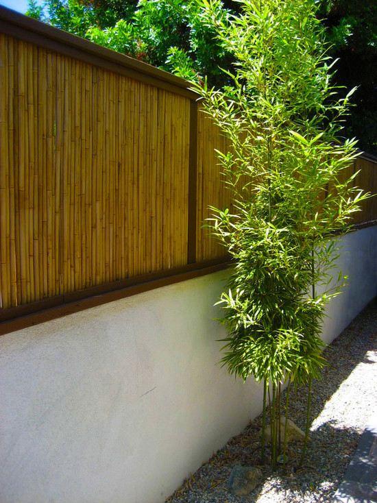 Brise Vue Bambou Et Clture Pour Plus Dintimit Dans Le