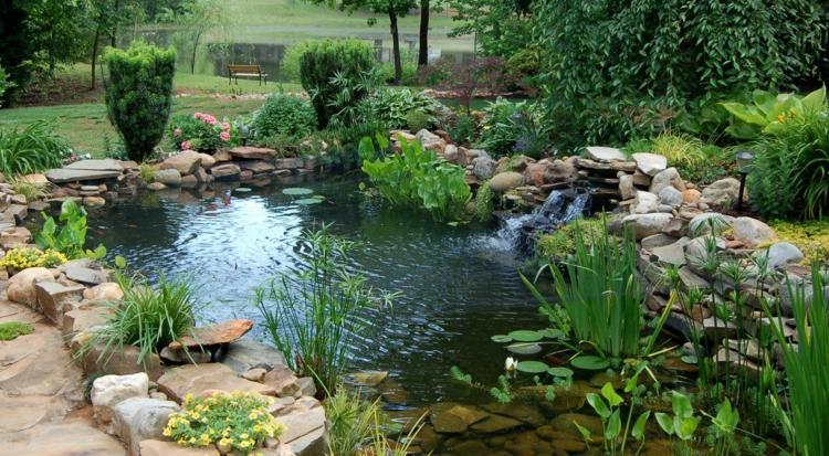 Bassin aquatique de jardin tapes de construction et photos