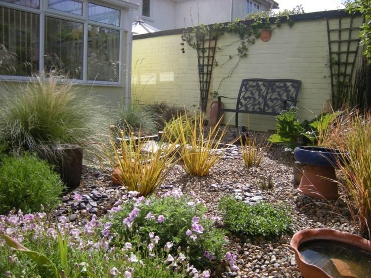 Quelles plantes pour son jardin sec  ides et conseils utiles