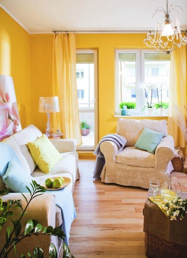 Peinture salon 24 couleurs conseils et astuces pour vous