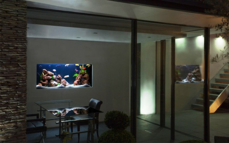 8 endroits propices o placer l aquarium maison