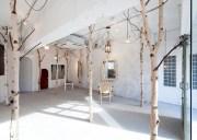 arbre intrieur dans 20 espaces