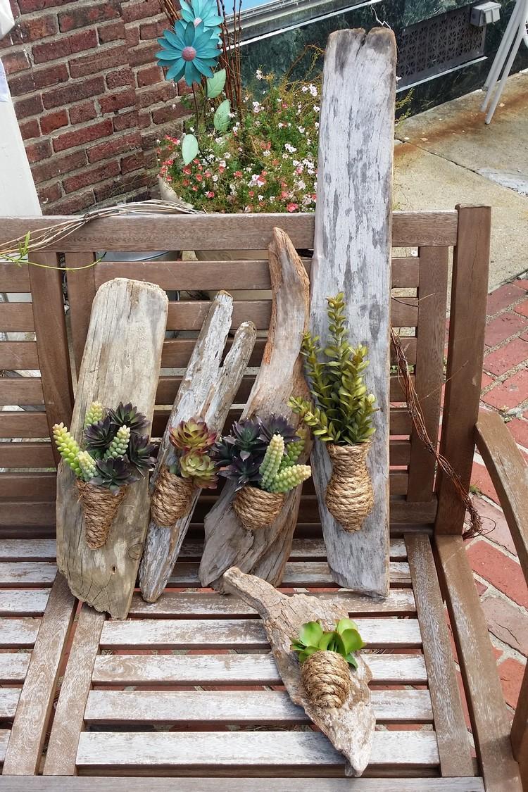 Dco bois flott  plantes succulentes  la nature sinvite chez vous
