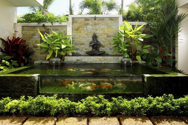 tang de jardin moderne pour hberger les poissons et