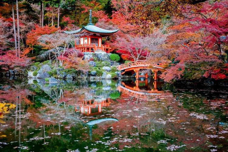 jardins japonais idees d amenagement