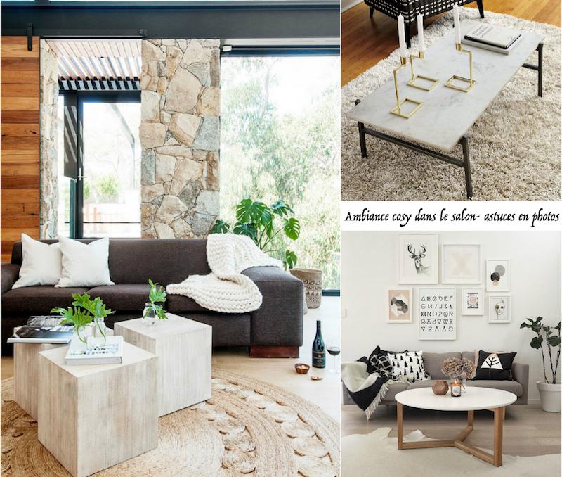 salon cosy 7 astuces pour creer une ambiance chaleureuse dans la salle de sejour