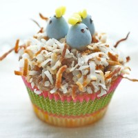 Easter treats - cute birds nest cupcakes