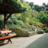 Sloping garden ideas and optimal solutions for landscape ...