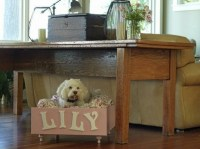 30 Creative ideas how to make a dog bed by yourself