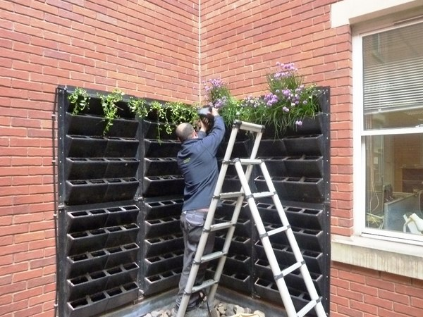 Balcony Planters Uk