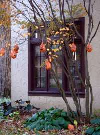 Creative Halloween tree decorations  DIY holiday decor ideas