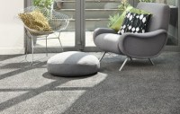 Gray carpet for the living room - a perfect match for ...